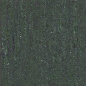 Polished Tile Floor Tile (E6913)