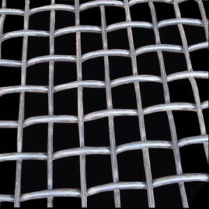 Well Galvanized Crimped Wire Mesh (TYE-18) Factory Price pictures & photos