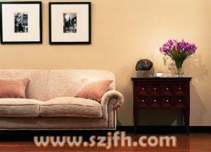 Sofa (SS201)