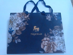 2014 Fashion Paper Gift Bag (XYCB011)