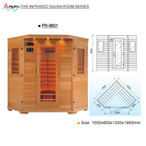 Pary Far-Infrared Sauna Room (Pr-9601)