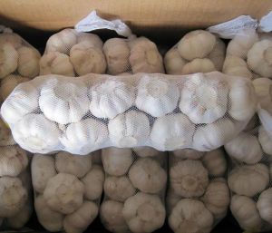 2017 Garlic New Corp Good Quality Chinese Original Garlic pictures & photos