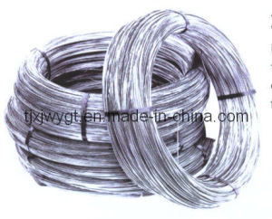 Stainless Steel Wire (201, 202, 304, 316, 310S, 430)