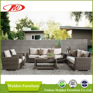 Rattan Furniture/ Outdoor Chair/Rattan Chair (DH-N9061) pictures & photos