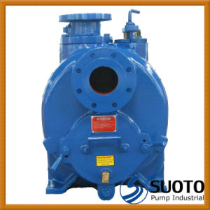 Sludge Pump (T) pictures & photos