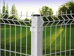 Well Selling Double Circle Fence
