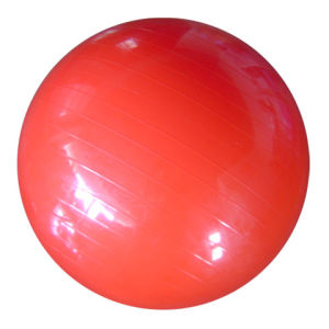 Smooth Gymball, Eco-Friendly PVC Material, 6p Free, 55cm (B05103) pictures & photos