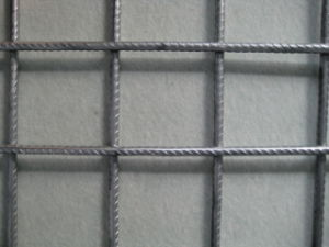 Steel Bar Wire Mesh (R-GJW) pictures & photos