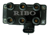 Auto Ignition Coil (RB-IC8102)