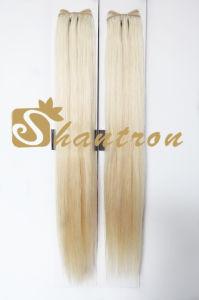 Top Quality 100% Natural Burmese Virgin Human Hair