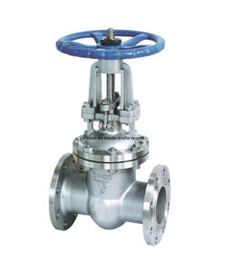 Stainless Steel ANSI Flanged Gate Valves pictures & photos