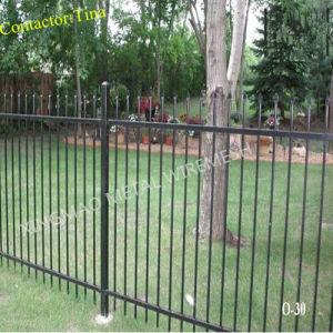 2 Rail Ornamental Iron Fence/ Residential Aluminum Picket Fences (XM3-29) pictures & photos