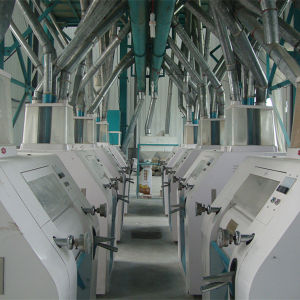10-300t Grain Milling Machine in South Africa pictures & photos