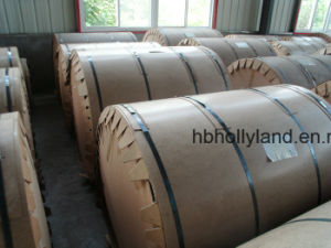 Embossed Coated Metal Coil (ALC1111) pictures & photos