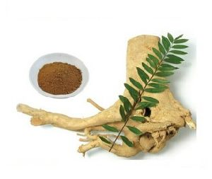 Health Food Tongkat Ali Extract 100: 1 pictures & photos