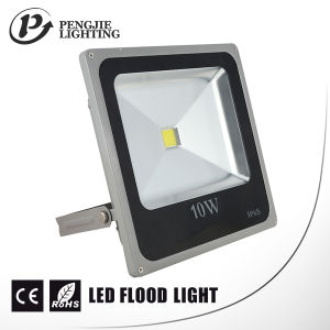 Energy Saving 10W LED Floodlight (IP65) pictures & photos