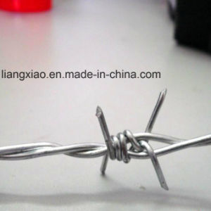 Cheap! Hot DIP/ Electric Galvanized Double Twist Barbed Wire pictures & photos