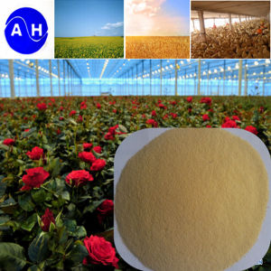 Hot Sale Organic Calcium Amino Acid Fertilizer High Quality Ca Chelate Amino Acid pictures & photos