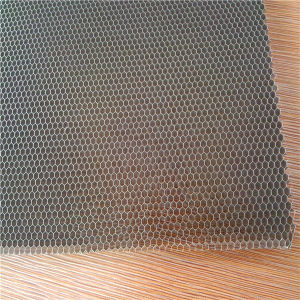 3003 Alloy Hexagonal Aluminium Honeycomb pictures & photos