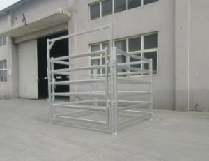 Galvanzied Cattle Gates pictures & photos