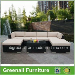 Outdoor Rattan/Wicker Sofa Garden Leisure Furniture pictures & photos