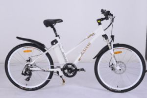 Hot Sale Electric Bicycle with En15194 pictures & photos