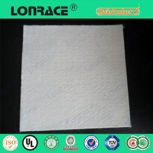 High Quality Woven Polyester Geotextile pictures & photos