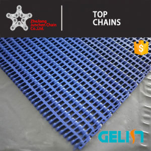 900y-005 Series Plastic Mesh Conveyor Belt/Plastic Flush Grid Conveyor Modular Belts pictures & photos