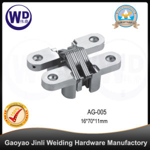 Zinc Alloy Concealed Gate Door Hinge, Cross Hinge AG-005 pictures & photos