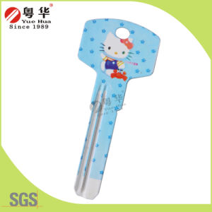 China Factory Customized Key Blank pictures & photos