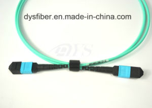 Factory Price for MPO/MTP Fiber Assembly Cable pictures & photos