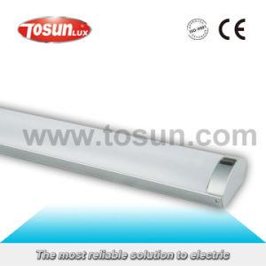 Ts-2101 Fluorescent Fixture T8 Lamp pictures & photos