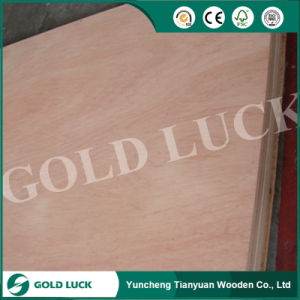 Poplar Core Bintangor Plywood for Packing or Furniture pictures & photos