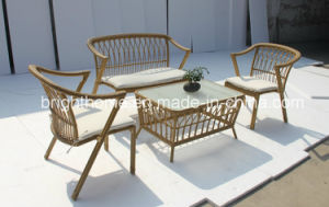 Environmental Protection Wicker Sofa Set/Garden Furniture (BP-8021) pictures & photos