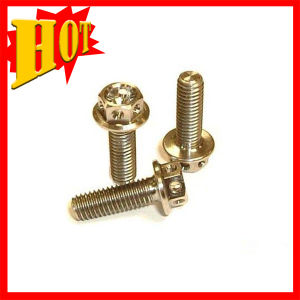 DIN Standard Gr5 Hex Flange Head Anodized Red Titanium Bolt pictures & photos