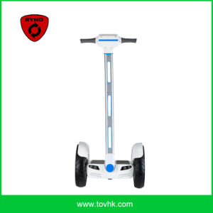 Ryno 2 Wheel Stand up Self-Balancing Scooter Chariot