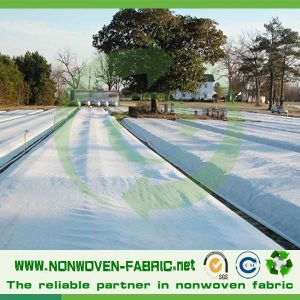PP Nonwoven Fabric with UV Treated Protecting From Frost pictures & photos