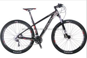 29er Inch Carbon Fiber Frame Mountain Bike M780 Mountain Bike