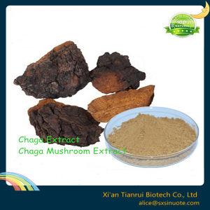 Cortex Albiziae Extract /Albizia Julibrissin Durazz Extract /Silktree Albizia Bark Extract pictures & photos