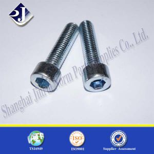 Stainless Steel A4-80 Hex Socket Cap Screw pictures & photos