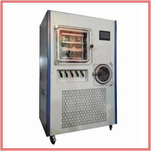 Pharmacy Medicine Freeze Vacuum Dryer pictures & photos