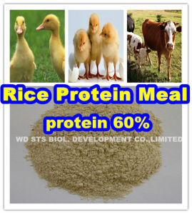 Rice Protein 60min for Animal Feed pictures & photos