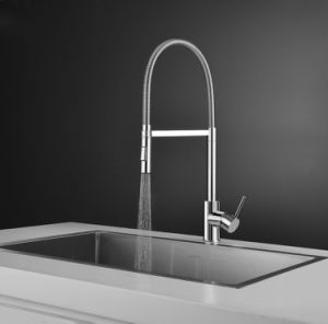 Popular Design Dual Function Spray Head Kitchen Faucet pictures & photos