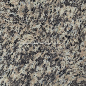 Natural Stone Granite Tiger Skin Red Slabs for Tiles and Countertopsger pictures & photos
