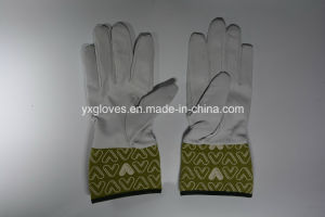 Garden Glove-Leather Glove-Working Glove-Industrial Glove pictures & photos