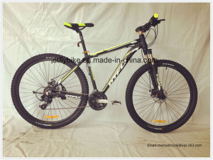 29inch MTB Bike, Alloy Frame, Shimano 24speed pictures & photos