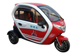Electric Tricycle Gwmd-1 pictures & photos