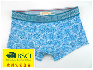 2015 Hot Product Underwear for Men Boxers 420 pictures & photos