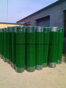 PVC Coating Welded Wire Mesh for Fence pictures & photos