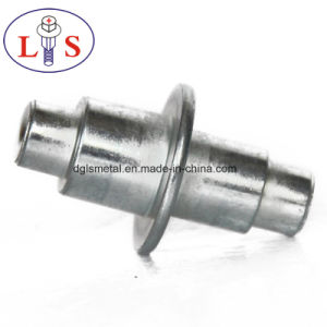High Quality Factory Direct Sales of Stainless Steel Rivets/ Non-Stardard Rivets pictures & photos